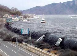 日本の災害一覧の被害状況